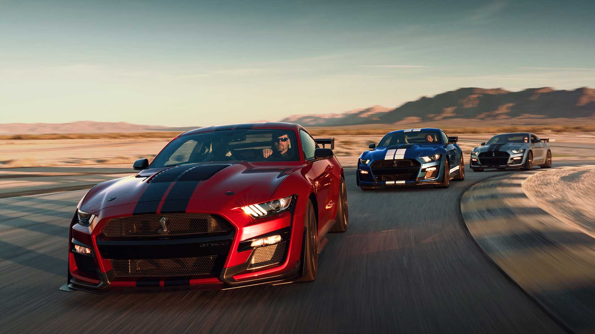 2020-ford-shelby-gt500-88   mustang shelby gt350 forum